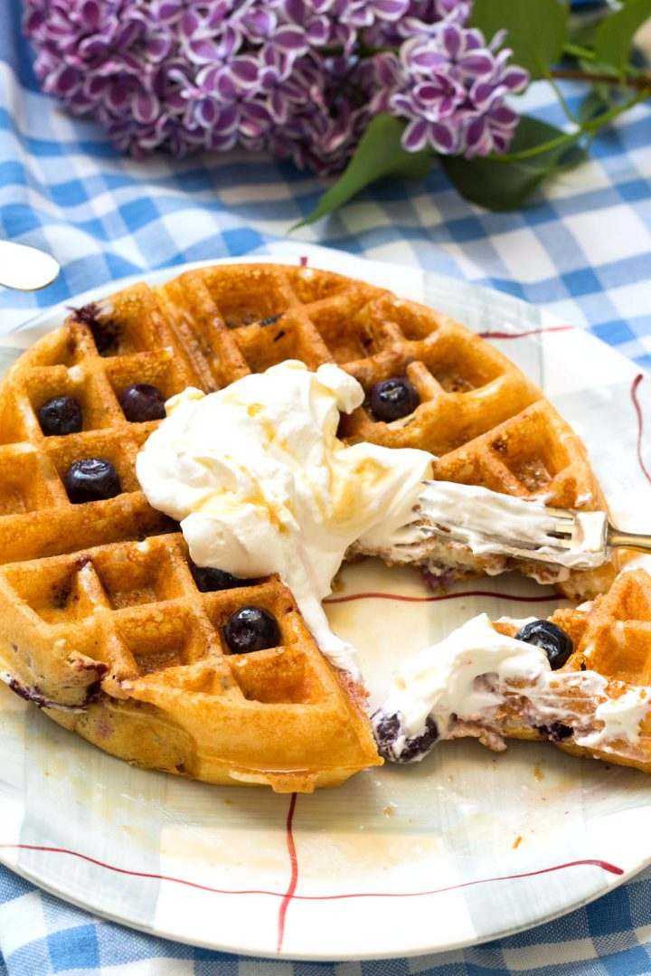 Lemon Blueberry Buttermilk Waffles-one on a plate with whipped cream