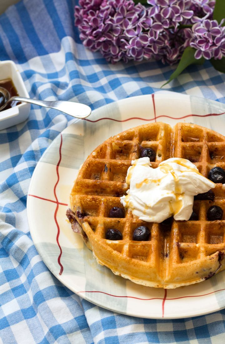 Lemon Blueberry Buttermilk Waffles-one on a plate with whipped cream and blueberries