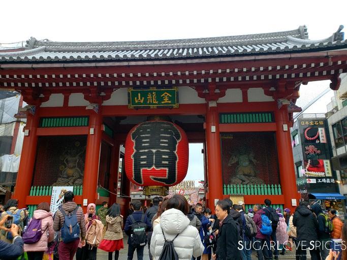 Nicoletta goes to Japan