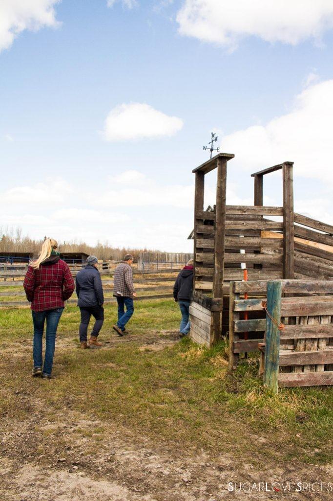 Triple Lyoness farm-people