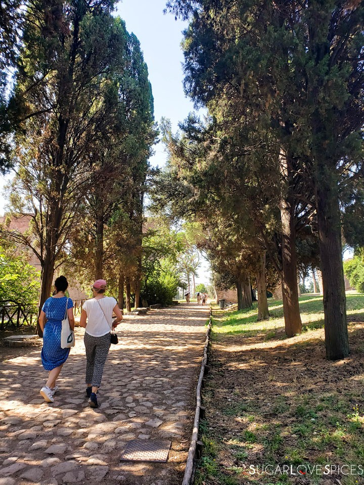 When in Rome, Roma Antica Tour-Palatine Hill