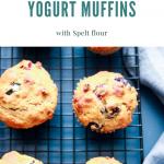 blueberry rhubarb yogurt muffins