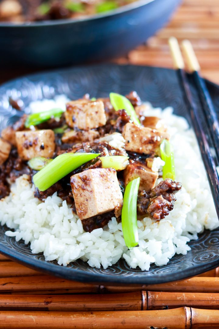 Authentic Sichuan Mapo Tofu Recipe-one plate closeup-frontal view